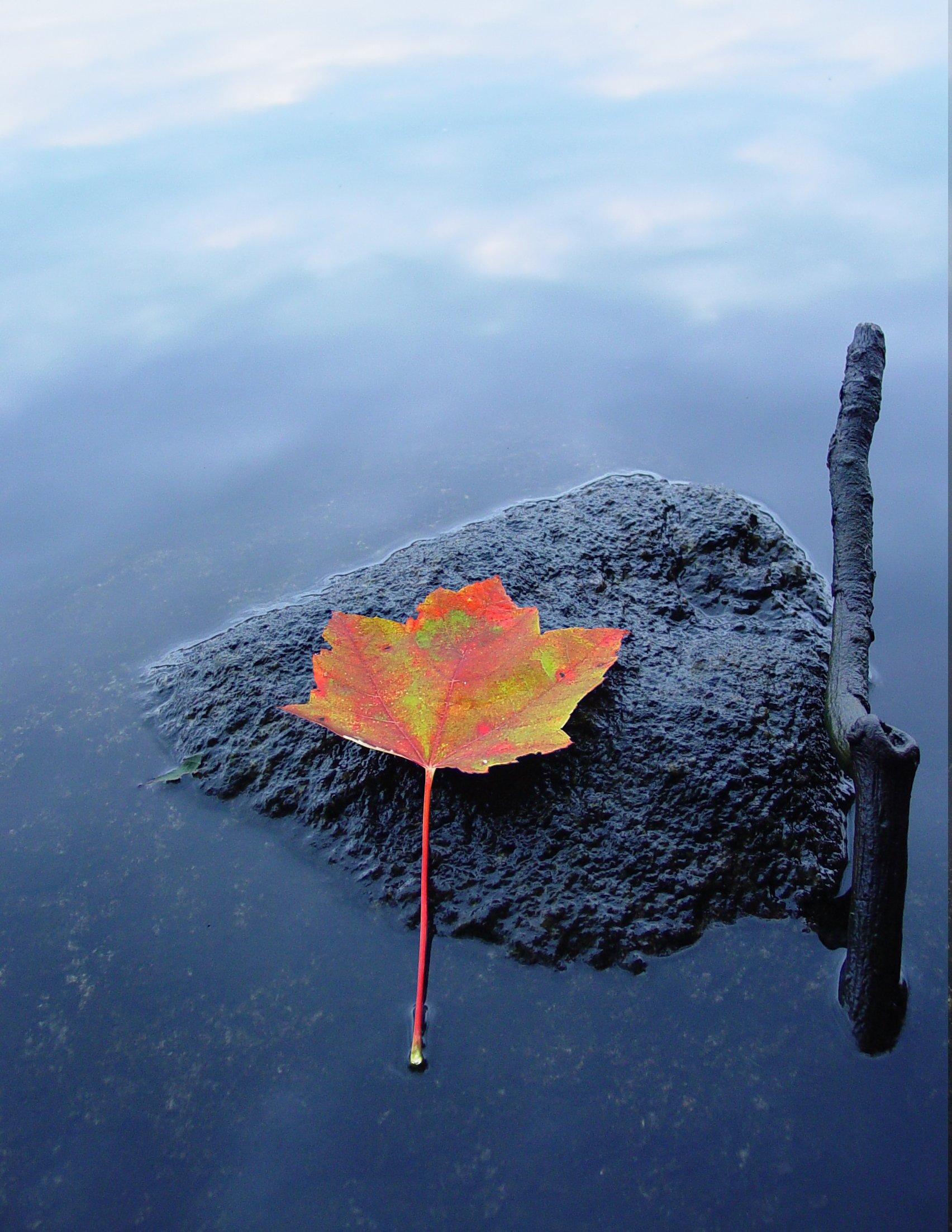 Méditation guidée : Ballade méditative